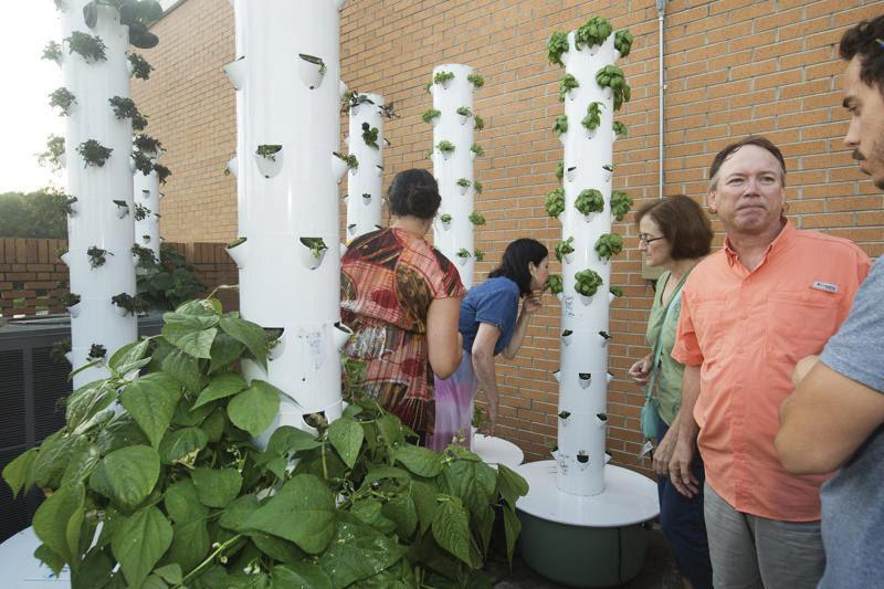 Members+of+the+Shoals+community+work+at+the+East+Campus+aeroponics+greenhouse.+Aeroponic+gardening+classes+were+taught+this+summer+and+participants+were+able+to+grow+plants+without+using+soil.