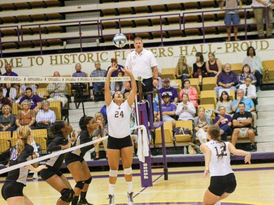 Junior+Andrea+De+Leon+sets+up+Sophomore+Lexie+Bradley+for+a+spike+against+Montevallo.+The+UNA+Lions+defeated+Montevallo+at+the+2015+UNA+Volleyball+Classic+Tournament+and+are+off+to+a+hot+start%2C+winning+nine+consecutive+games.