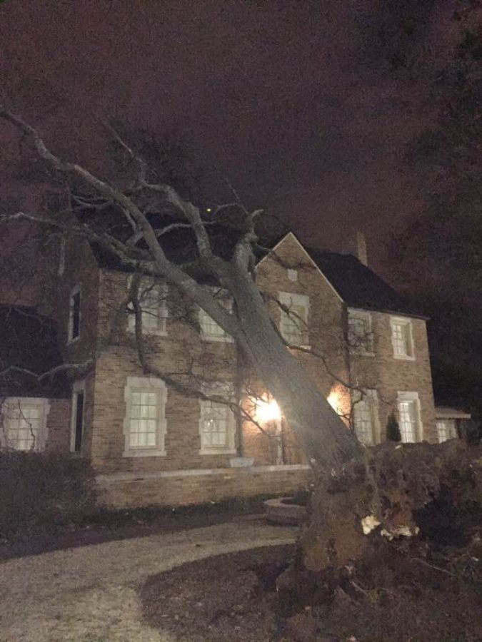 A tree fell and landed on the roof of the Presidents home Feb. 12. The only damage was to the roof on the north side of the house above Kitts' children's room, Graham said.